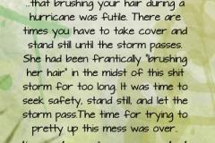 shit-storm-copy